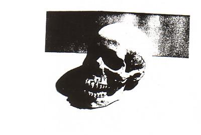 [Andy Warhol Skull]